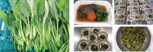 【農福連携の新たな取り組み】障がい者就労支援の農園で育てた野菜を、障がい者入所施設などの食事メニューに活用スタート